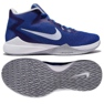 Basketballschuhe Nike Air Precision M blau