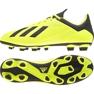 Fußballschuhe adidas X 18.4 Fg M DB2188 gelb gelb