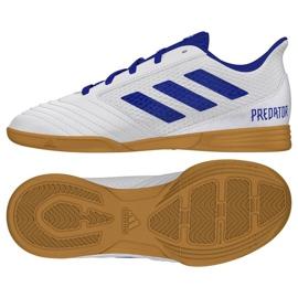 Indoor Schuhe adidas Predator 19.4 In Sala Jr CM8550