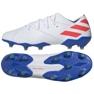 Fußballschuhe adidas Nemeziz Messi 19.1 Fg M F34402