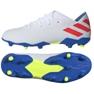 Fußballschuhe adidas Nemeziz Messi 19.3 Fg M F34400