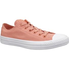 Orange Converse C. Taylor All Star Schuhe W 163307C