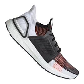 Mehrfarbig Laufschuhe adidas UltraBoost 19 m M G27519