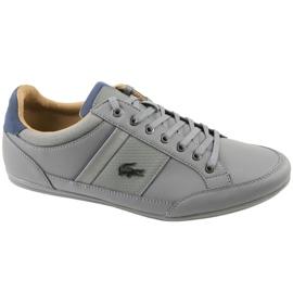 Grau Lacoste Chaymon 118 1 M CAM0011G1N81 Schuhe