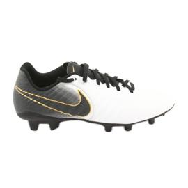 Fußballschuhe Nike Tiempo Legend 7 Academy Fg M AO2596-100