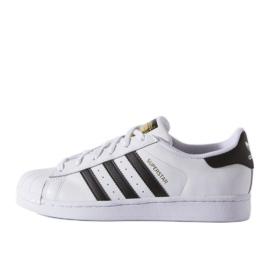 Adidas Originals Superstar Fundation Jr C77154 Schuhe weiß