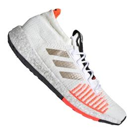 Adidas PulseBOOST Hd M EE9564 Schuhe weiß